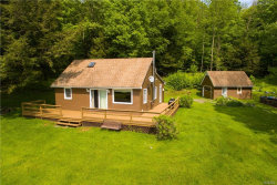 Photo of 1414 Park Hill Road, Downsville, NY 13755 (MLS # 4922979)
