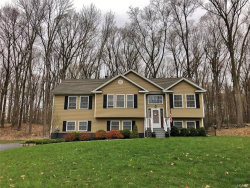 Photo of 33 Tap Stone Lane, Port Jervis, NY 12771 (MLS # 4923132)