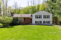 Photo of 3 Brusk Drive, Hopewell Junction, NY 12533 (MLS # 4926388)