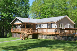 Photo of 2036 River Road, Downsville, NY 13755 (MLS # 4939407)