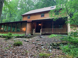Photo of 30 Cortright Road, Port Jervis, NY 12771 (MLS # 4996491)