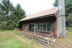 Photo of 20 Englese Drive, Claryville, NY 12725 (MLS # 5035612)