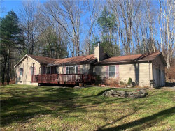 Photo of 16 Mill Road, Forestburgh, NY 12777 (MLS # 5117462)
