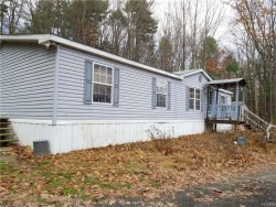 Photo of 24 Iken Road, Kerhonkson, NY 12446 (MLS # 5121355)