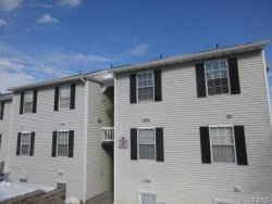 Photo of 25 Lexington Hill, Unit 2, Harriman, NY 10926 (MLS # 4706580)
