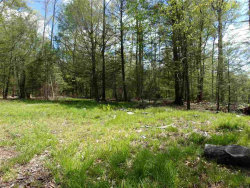 Photo of Church Road, Fallsburg, NY 12733 (MLS # 4215800)
