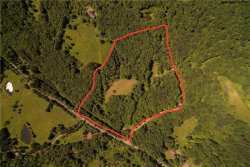 Photo of 1 Beech Hill Ridge Road, Lew Beach, NY 12758 (MLS # 4215921)