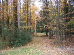 Photo of 00 Rt. 42, Forestburgh, NY 12777 (MLS # 4217862)
