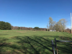 Photo of South Hill Black Joe, Ellenville, NY 12489 (MLS # 4217905)