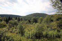 Photo of 0 Lang Road, Hancock, NY 13783 (MLS # 4220015)