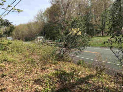 Photo of 20.-1-29.3 State Route 52, Loch Sheldrake, NY 12759 (MLS # 4220592)