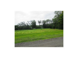 Photo of Welsh Road, Callicoon, NY 12723 (MLS # 4537096)