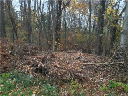 Photo of 27 Maple Drive, Brewster, NY 10509 (MLS # 4631626)