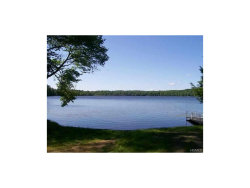 Photo of 39 Lake Ridge Road, White Lake, NY 12786 (MLS # 4648338)