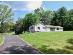 Photo of 231 Cauterskill Road, call Listing Agent, NY 12414 (MLS # 4715289)
