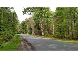 Photo of 0 South French Clearing, Forestburgh, NY 12777 (MLS # 4724735)