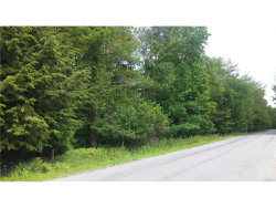 Photo of Aberson Road Tr 4, Fallsburg, NY 12733 (MLS # 4736334)