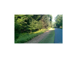 Photo of Forest Road, Neversink, NY 12740 (MLS # 4737096)