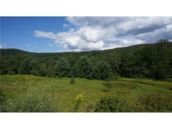 Photo of State Route 42, Neversink, NY 12765 (MLS # 4737131)