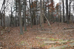 Photo of 00 US Route 9w, call Listing Agent, NY 12015 (MLS # 4744410)