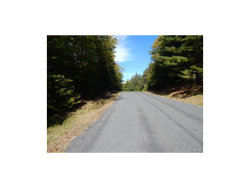 Photo of Rose Valley Road, Monticello, NY 12701 (MLS # 4745875)