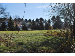 Photo of 18 Firehouse Lane, Pine Island, NY 10969 (MLS # 4750231)