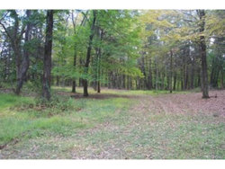 Photo of 90 Carpenter Road, Hopewell Junction, NY 12533 (MLS # 4750240)