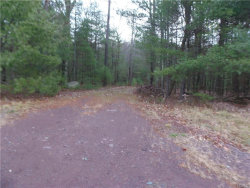 Photo of Lot#7 Route 42, Forestburgh, NY 12777 (MLS # 4751142)