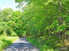 Photo of Lot 1 Alley Road, Monroe, NY 10950 (MLS # 4812212)