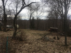 Photo of Cedar Tr. Trail, Blooming Grove, NY 10914 (MLS # 4816649)