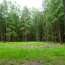 Photo of Stonewall Road, call Listing Agent, NY 12017 (MLS # 4817275)