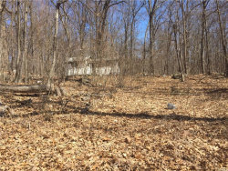 Photo of 211 Huckleberry Turnpike, Wallkill, NY 12589 (MLS # 4818308)