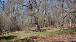 Photo of 4564 State Route 52, Jeffersonville, NY 12748 (MLS # 4820453)