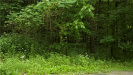 Photo of 1501 US Route 209, Cuddebackville, NY 12729 (MLS # 4826169)