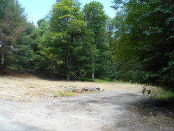 Photo of 52 Taconic Trail, Bethel, NY 12720 (MLS # 4830773)