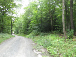 Photo of Tr 64, Fremont Center, NY 12736 (MLS # 4844947)