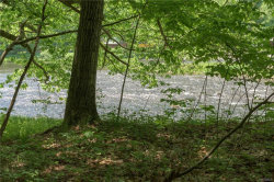 Photo of Route 17, East Branch, NY 13783 (MLS # 4844954)