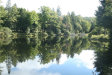 Photo of Pearl Lake Road, Parksville, NY 12768 (MLS # 4853529)