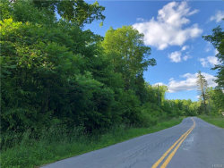 Photo of 175 Sands Road, Middletown, NY 10941 (MLS # 4855510)