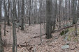 Photo of Woodmont Road, Hopewell Junction, NY 12533 (MLS # 4905460)