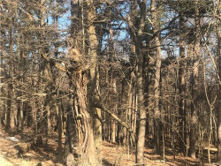 Photo of St Hwy 207, Campbell Hall, NY 10916 (MLS # 4910310)