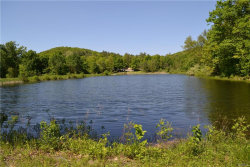 Photo of 118 Skiba Road, Pine Plains, NY 12567 (MLS # 4967679)