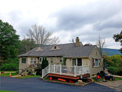 Photo of 30 Trout Brook Road, Highland Mills, NY 10930 (MLS # 4846831)