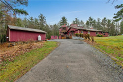 Photo of 132 Boehmler Road, Sparrowbush, NY 12780 (MLS # 4922760)