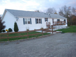 Photo of 326 Briggs Highway, Ellenville, NY 12428 (MLS # 4902988)