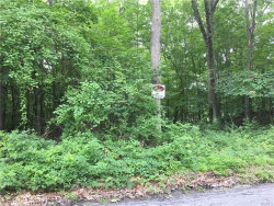 Photo of 00 North Horsepound Road, Carmel, NY 10512 (MLS # 4630935)