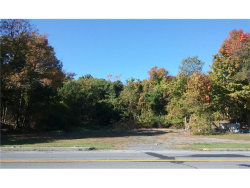 Photo of 145 State Route 17m, Harriman, NY 10926 (MLS # 4644257)