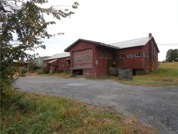 Photo of 509 Bellvale Road, Chester, NY 10918 (MLS # 4700885)