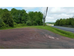 Photo of 0 Bridgeville Road, Monticello, NY 12701 (MLS # 4724670)