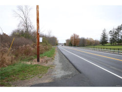 Photo of 0 State Route 211 Ws, Montgomery, NY 12549 (MLS # 4748676)